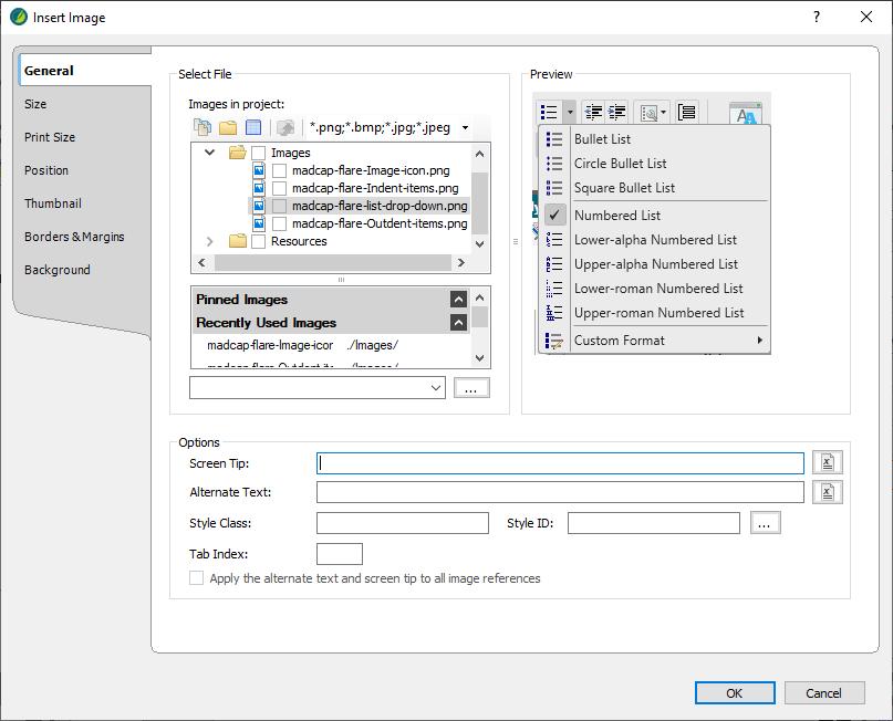 Madcap flare Insert Image dialog box